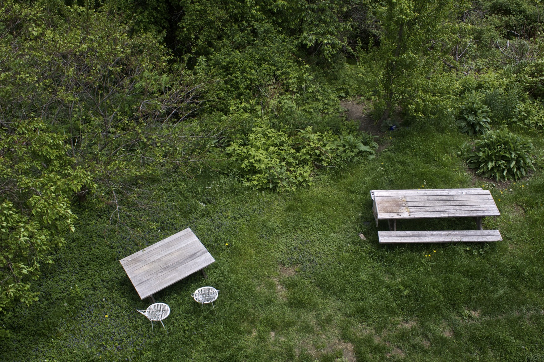 The Bored Vegetarian Picnic Tables