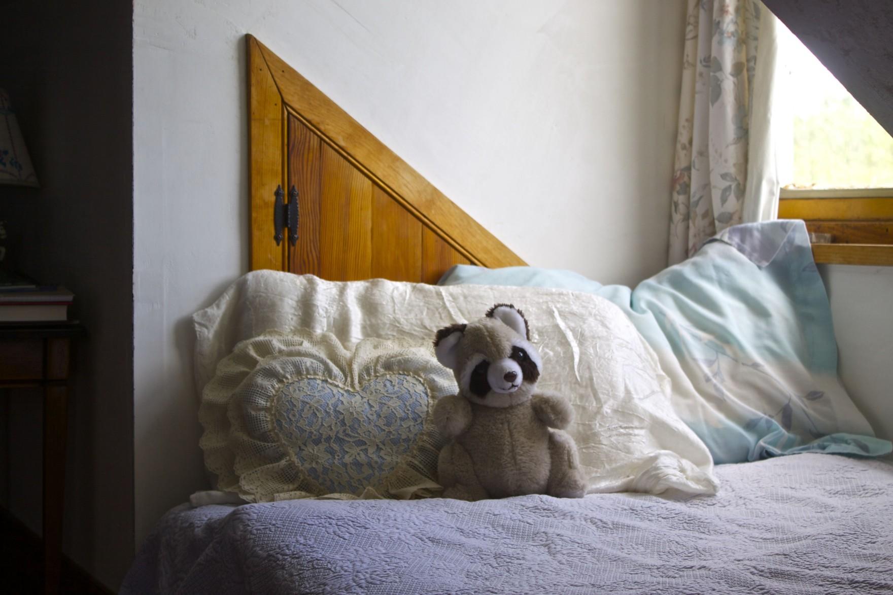 The Bored Vegetarian Raccoon