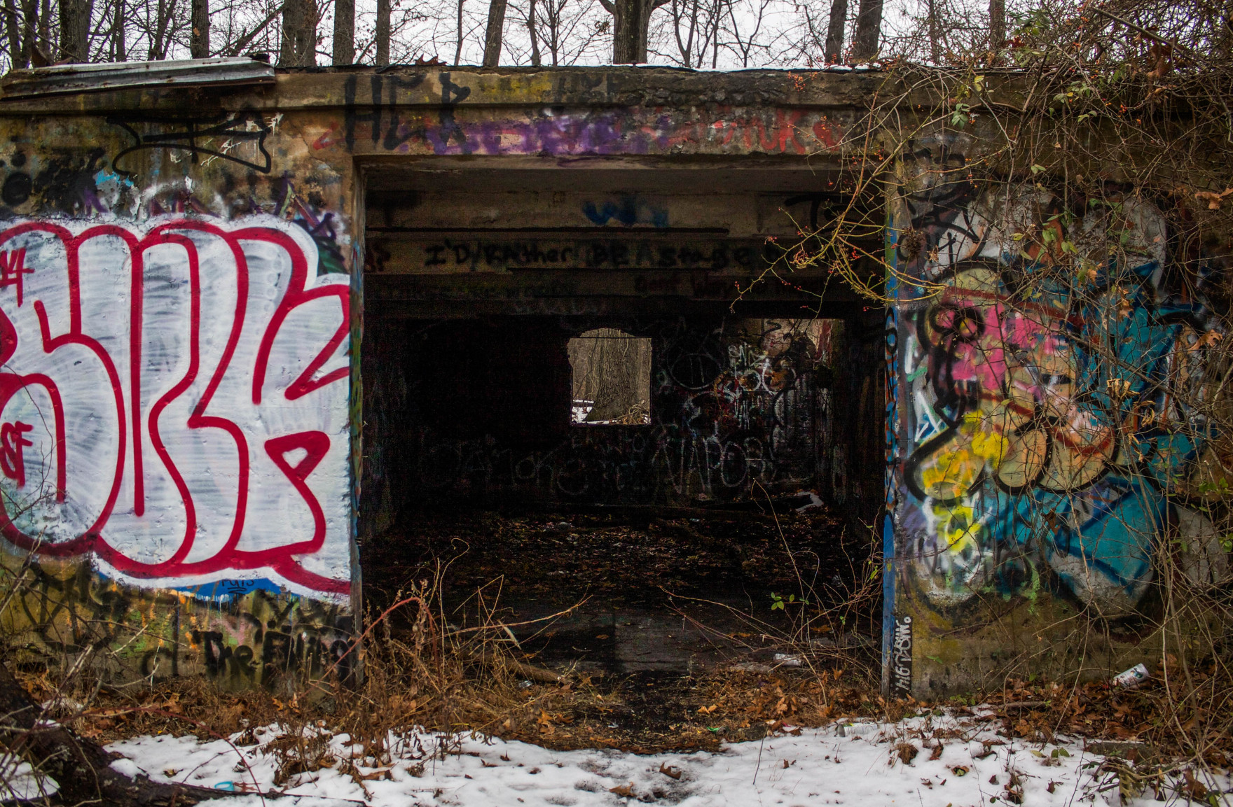 Bored Vegetarian Abandoned Army Tunnels-8