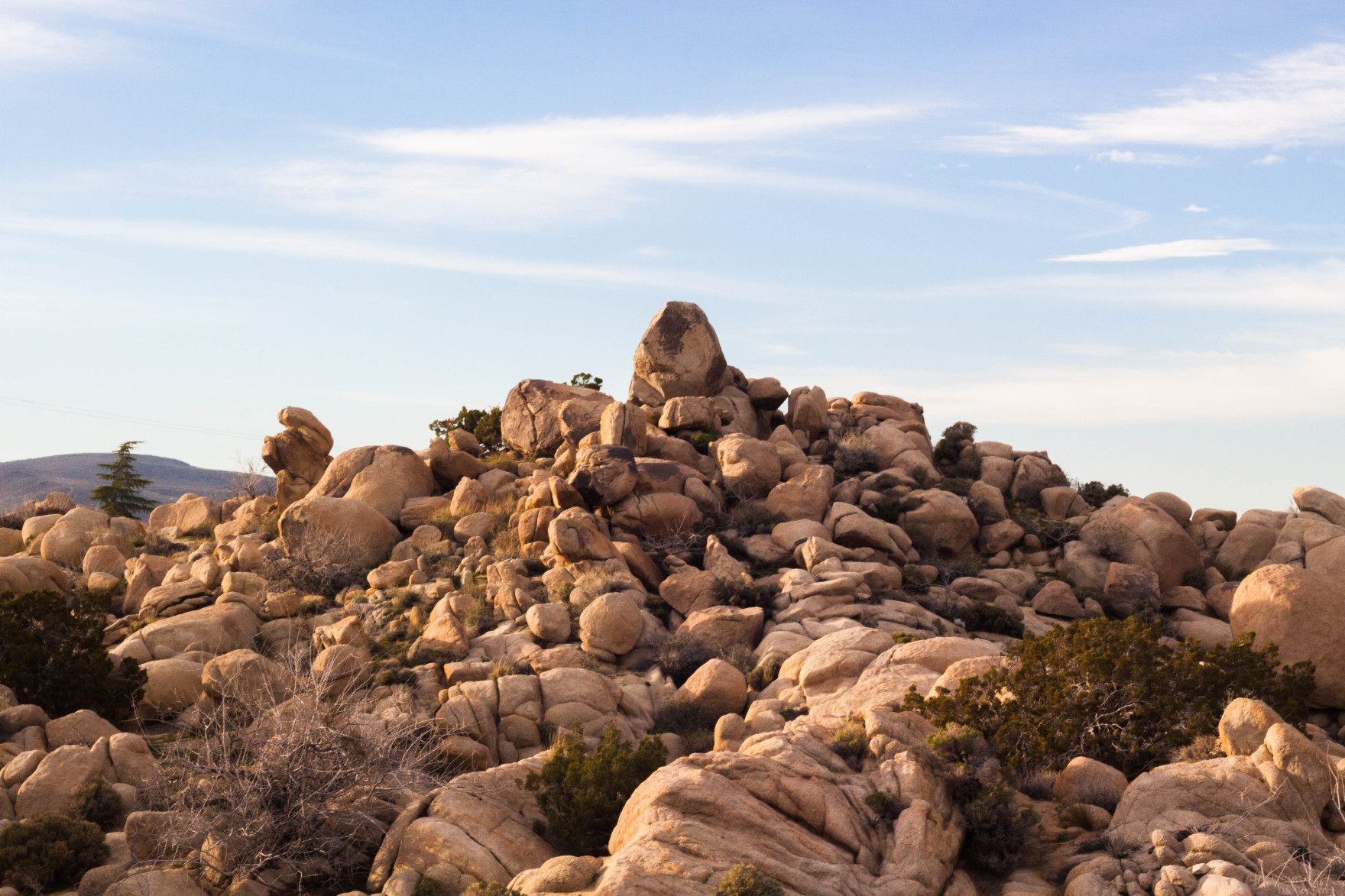 Bored Vegetarian Bethany Pickard Yucca Valley Joshua Tree Pile of Rocks-15